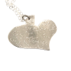 Heart of Sterling Necklace
